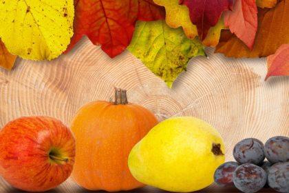 image-pixabay-fall-leaves-2